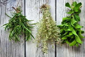 Various fresh herbs hanging up to dry.