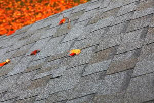 A roof, with leaf-strewn lawn below.