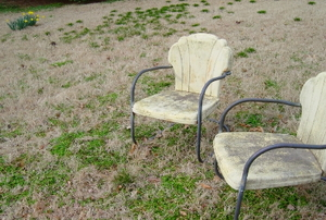 A dead lawn with retro chairs on it.