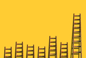 Ladders of varying sizes against a bright yellow wall.