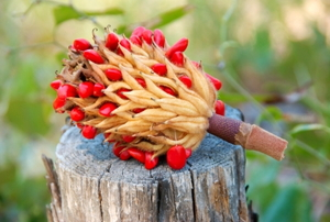 A magnolia seed pod sitting on a stump.