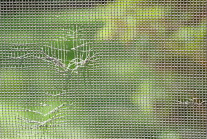 A close-up of a window screen with holes in it.