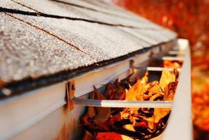 5 Types of Leaf Protection for Gutters