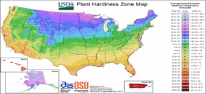 3 Things to Know About a Plant Hardiness Zone