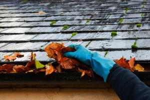 The Art of Gutter Cleaning