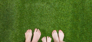7 Steps to Your Best Lawn Ever
