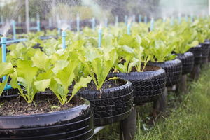 4 Raised Garden Bed Ideas