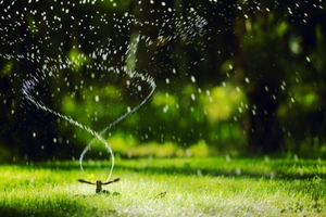 When and How Long You Should Run Your Sprinklers