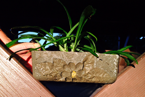 Create an Easy Concrete Planter with Shapecrete