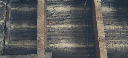 How To Remove Mold From Floor Joists