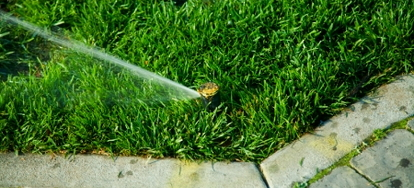 4 Common Sprinkler Head Problems | DoItYourself com