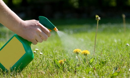 How to Kill Weeds Between Patio Paving Stones   DoItYourself com