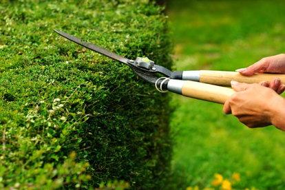 How to Safely Sharpen Garden Shears | DoItYourself com