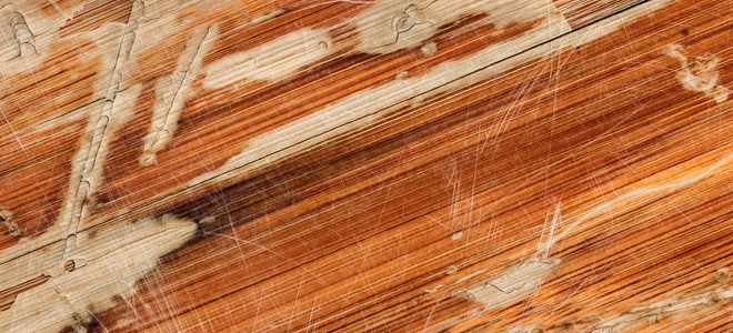 How To Repair Buckled Laminate Flooring Doityourself