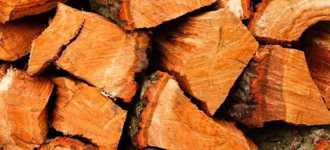 Some Facts About Firewood Doityourself Com
