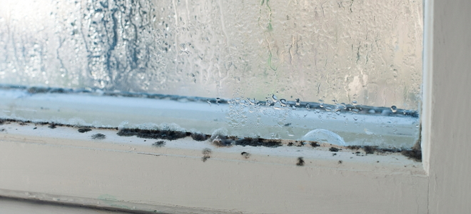How to Remove Mildew from a Wooden Window Frame  DoItYourself
