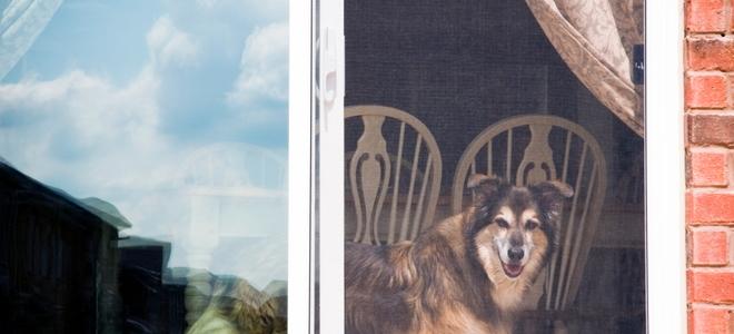 how to adjust a sliding screen door how to adjust a sliding screen door