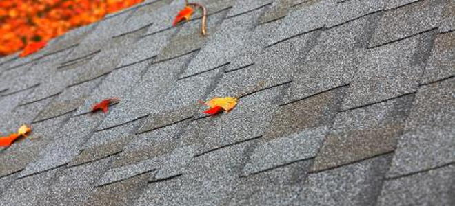 How to Clean Mold off Roof Shingles – Cleaning Roof Shingles