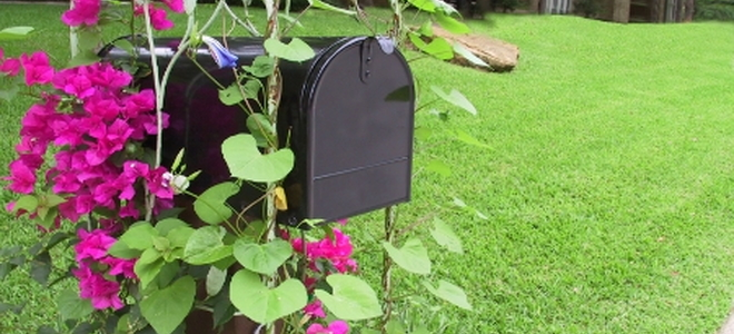 Do It Yourself Home Design: How To Landscape Your Mailbox