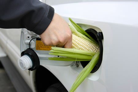the pros and cons of ethanol essay Essay on pros and cons to biofuels 1152 words | 5 pages the largest even at this moment, certain suppliers are selling biodiesel at the same price as diesel fuel but this trend is unlikely to continue in the future using biofuels for racing is an biofuel: ethanol alternative to transportation essay 2070 words | 9 pages.