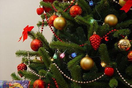 How to make your tree last longer - Make christmas tree last longer ...