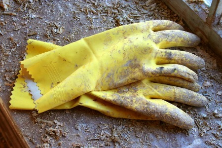 Best Gloves For Paint Stripping
