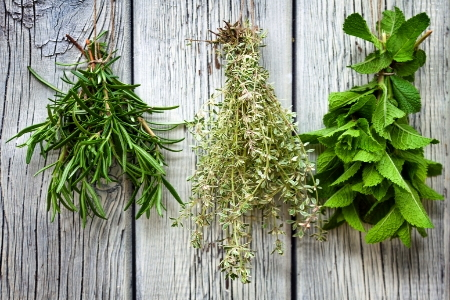 Growing And Storing Herbs In Winter Doityourself Com