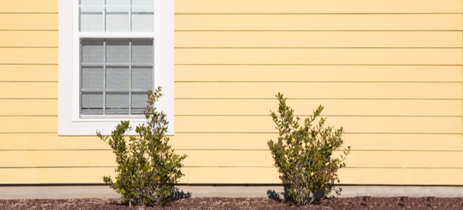 light yellow house window with painted wood, windows and small bushes