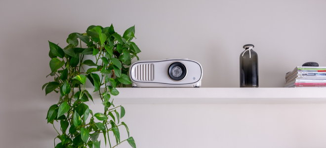 projector on a shelf with a plant and white wall