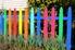 Multi-colored garden fence