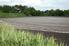 a sewage drain field