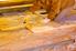 man installing batt insulation