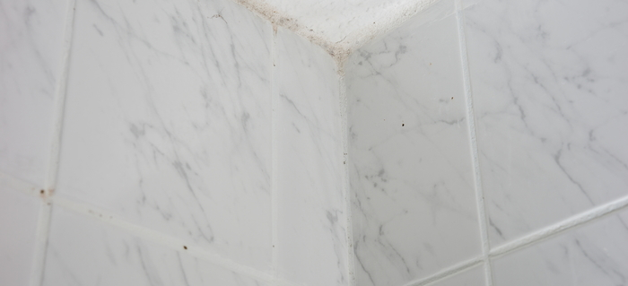 How To Clean Mildew Off A Bathroom Ceiling DoItYourselfcom - How to clean mold off bathroom ceiling