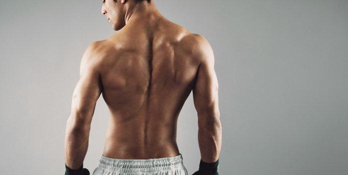 back exercises.jpg