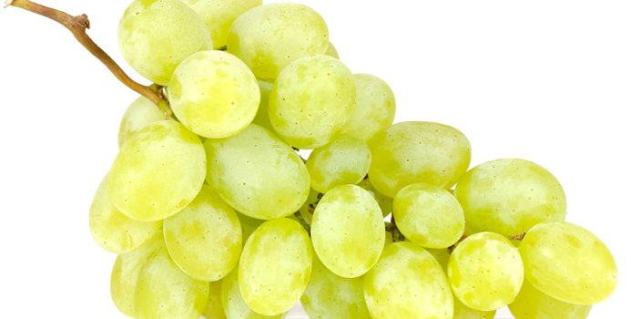 Grapes_000018353072_Small.jpg