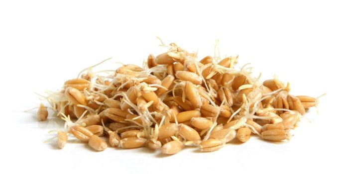 wheat germ_000015482849_Small.jpg
