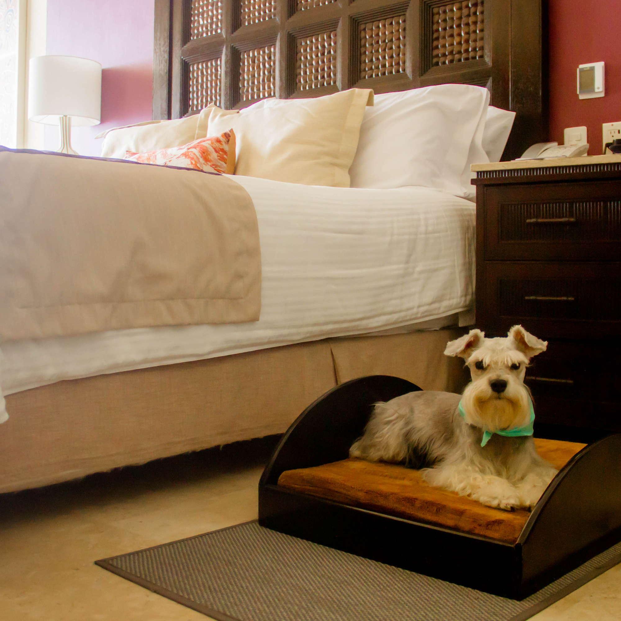 Casa Dorada Los Cabos Resort & Spa Expert Review | Fodor\'s Travel