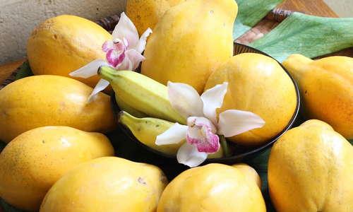 Fresh Island Fruit