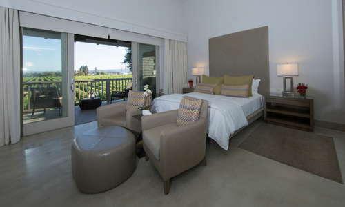 Vineyard View Suite