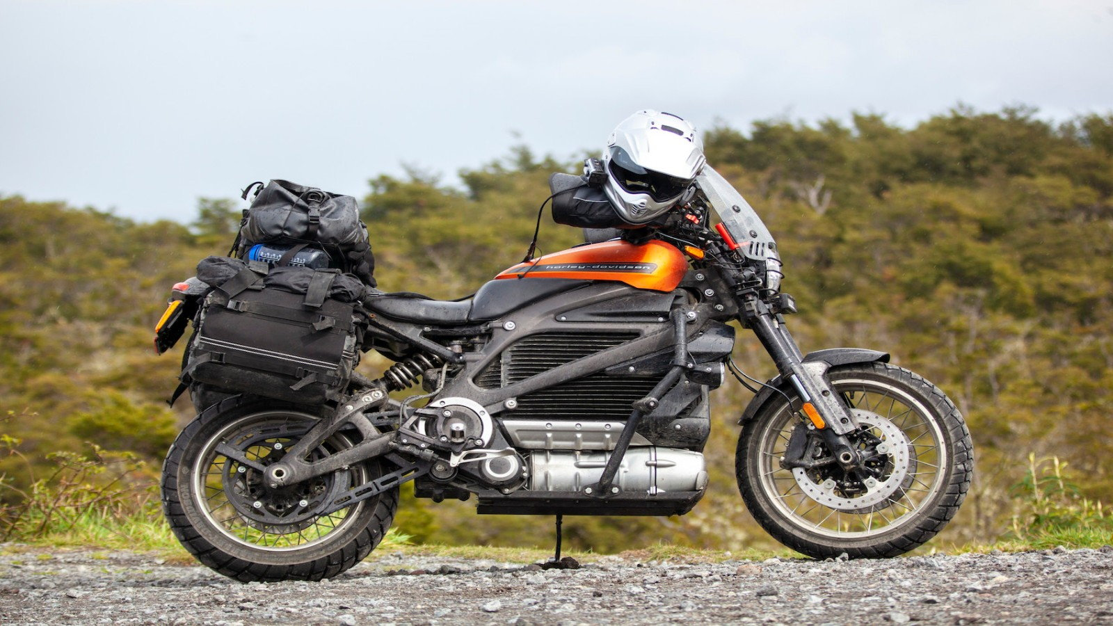 Harley-Davidson's