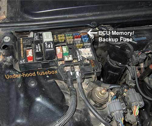 Howtogut Fuseecu on 1999 honda accord engine wiring diagram