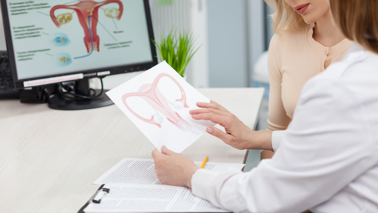 fertility consultation