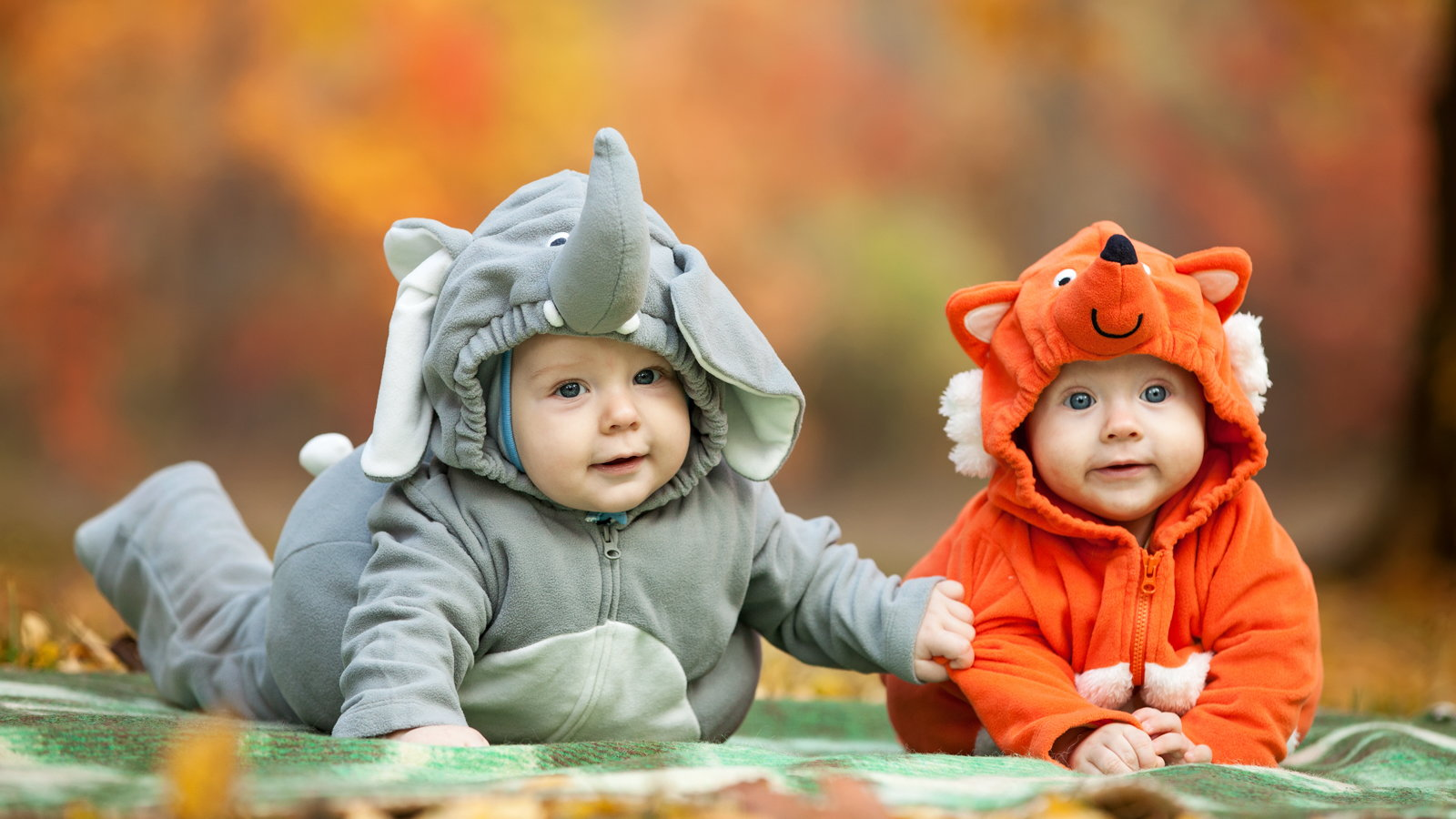 two babies dressed in Halloween costumes