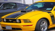 Ford Mustang V6 and Mustang GT 1994-2004: Fuse Box Diagram ...