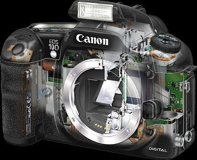 Canon EOS 10D, image (c) 2003 Canon USA