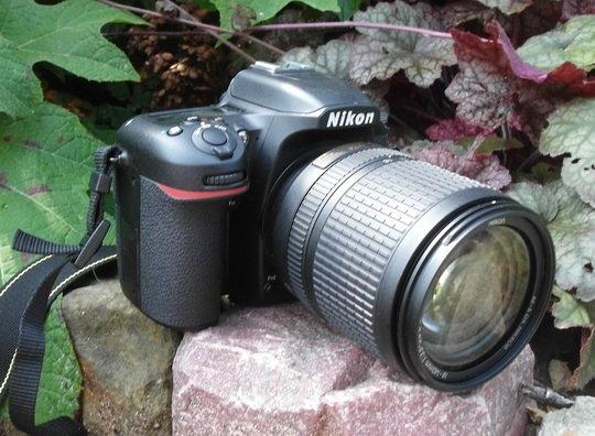Nikon D7500 front right angle.jpg