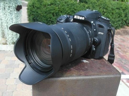 Tamron lens front lens hood.jpg