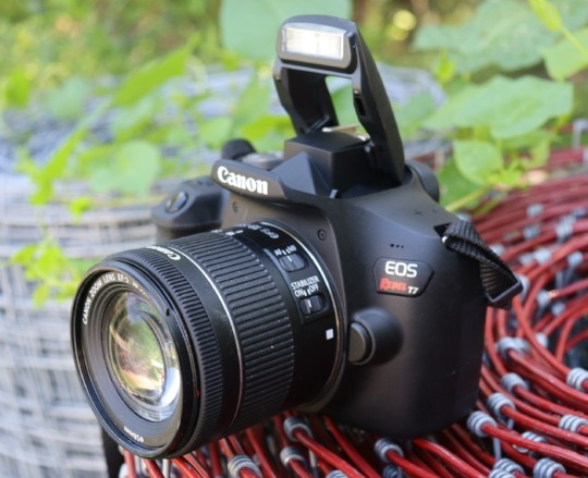 Canon Eos Rebel T7 Dslr Review Steve S Digicams