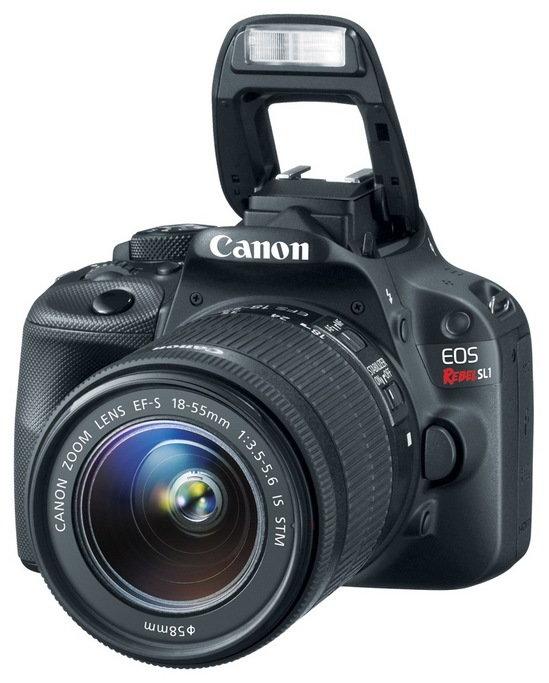 Canon_eossl1_3qflash.jpg