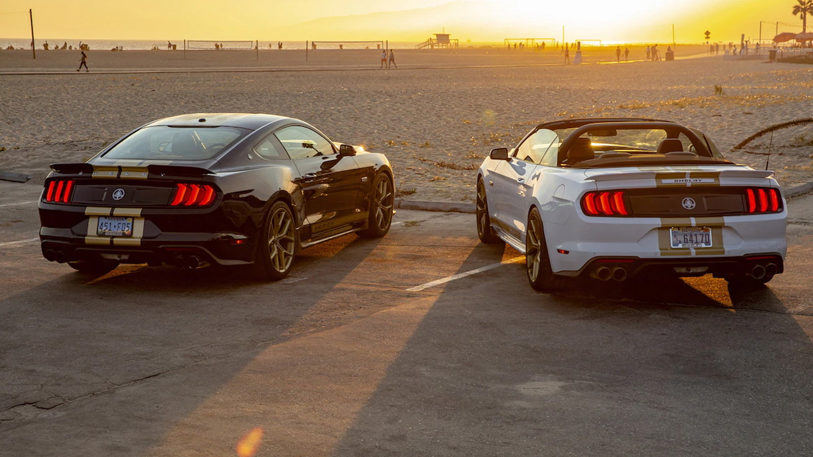 2019 Shelby GT is an Upgraded Mustang GT